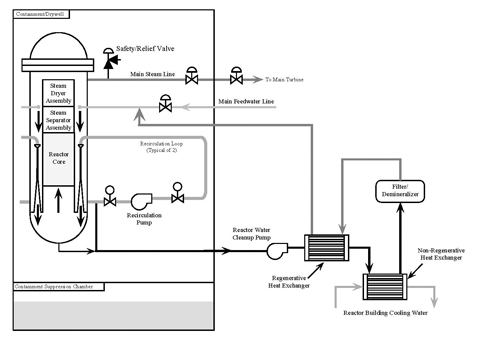Reactor Water Cleanup System