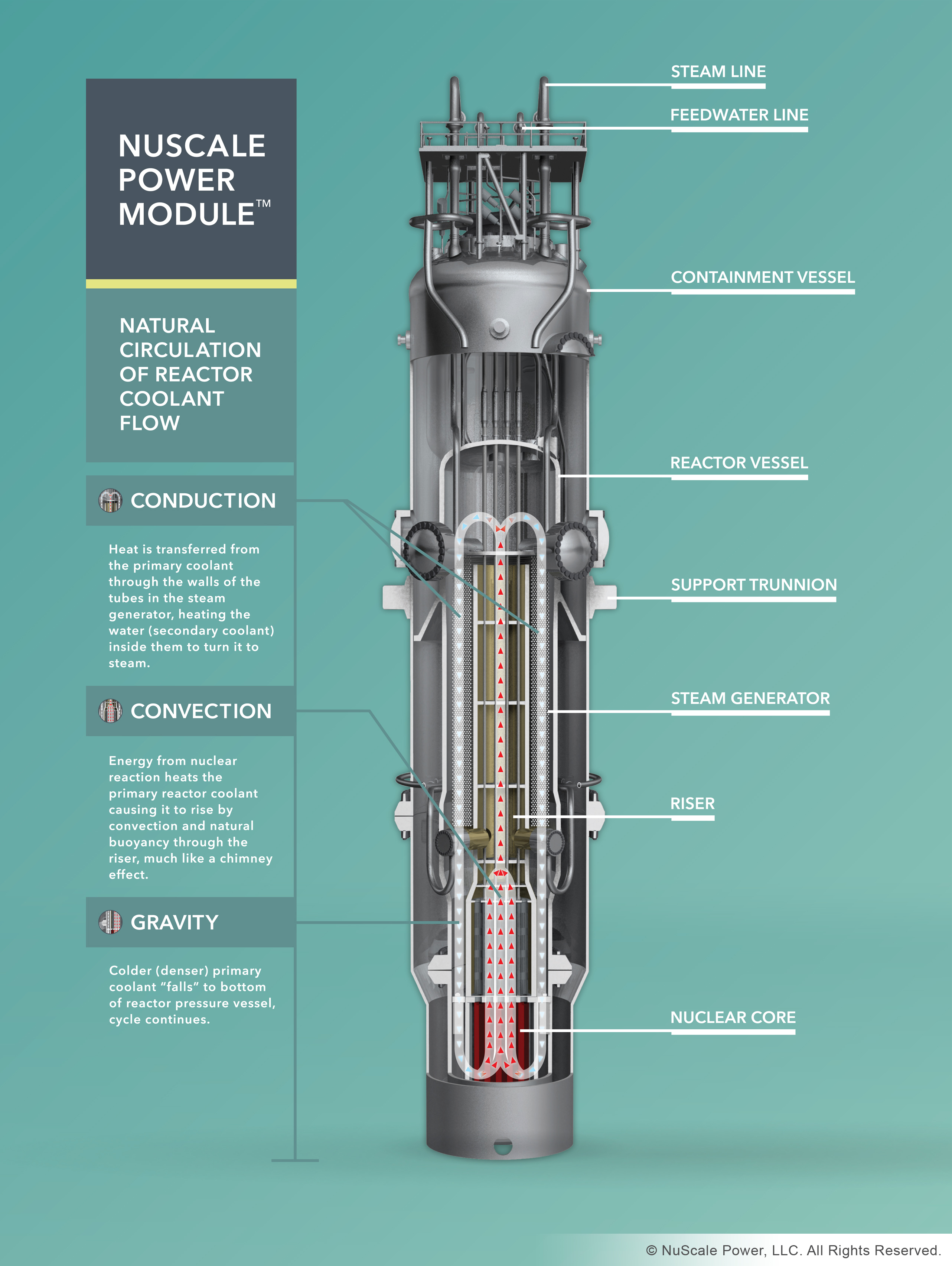 Nuscale Exec Estimates Modular Reactors In Britain By 2025 News Nuclear Power Plant Flow Diagram